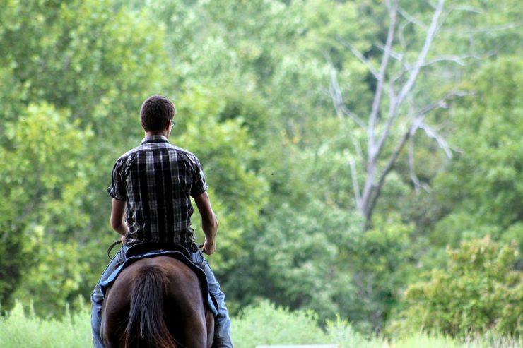 vaincre sa peur à cheval