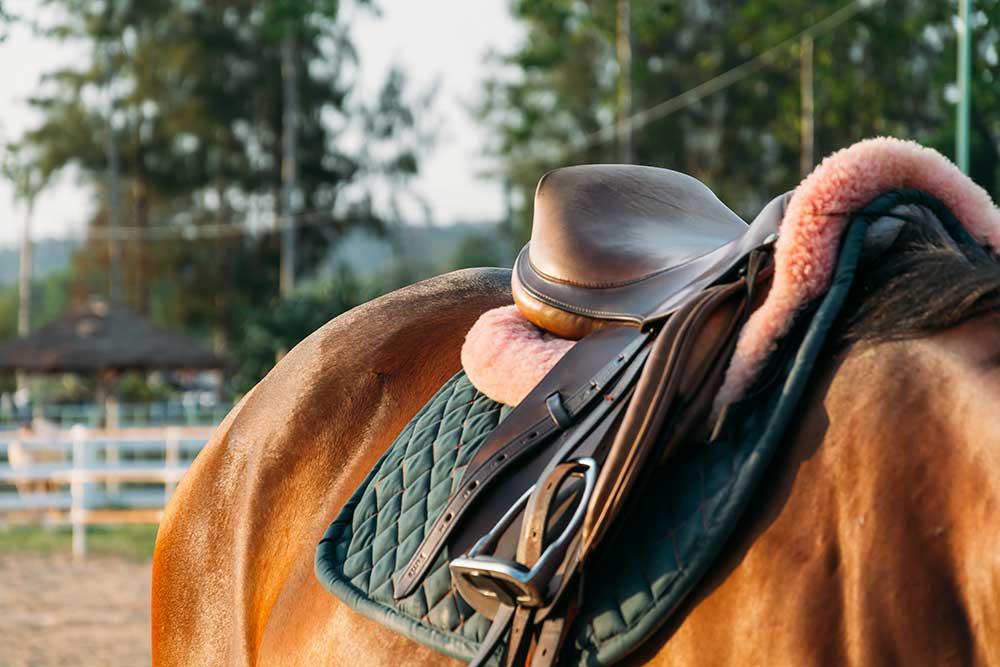Tapis de selle pour cheval