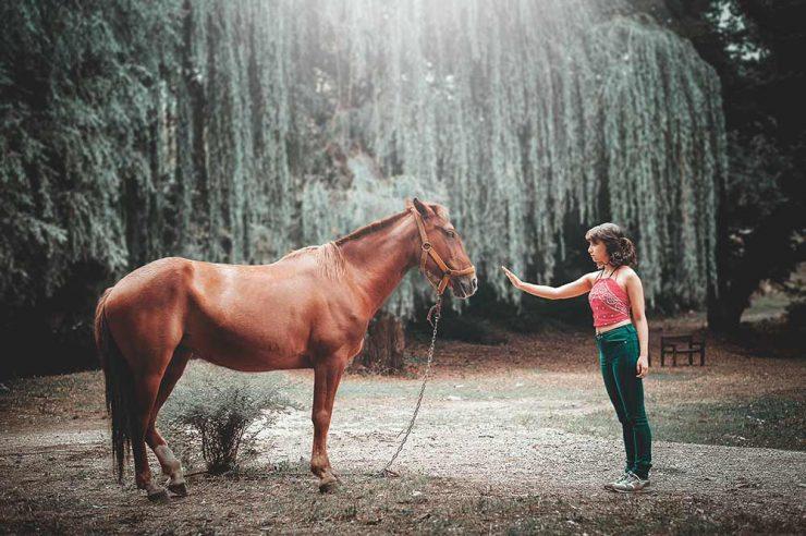 Respect entre la jeune fille et le cheval