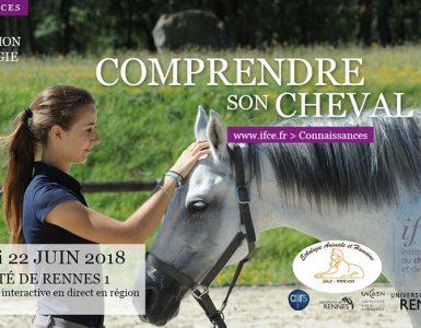 Journée d'infos sur l'éthologie équine à Rennes