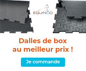 DallesMeilleurPrix-300x250.jpg