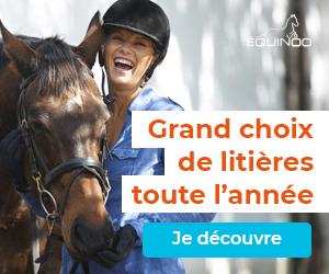 GrandChoixLitieres-300x250.jpg