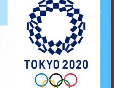 cavalier cheval jeux olympiques tokyo 2021 litière copeaux litière granulés bois cheval chevaux litière pas cher chevaux