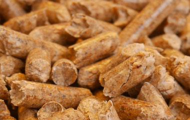 Equinoo liti res en granul s de bois pour les chevaux - Granules de bois bricomarche ...